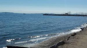 Mer La Londe-les-Maures 83250 Vu port la londe les maures