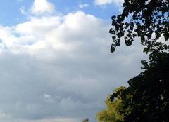 Ciel Versailles 78000 Après la pluie le soleil dans le parc du Roy ?