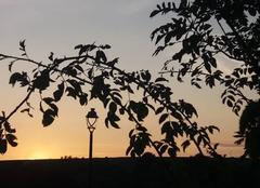 Ciel Sarrewerden 67260 Le soleil se couche sur l'Alsace bossue.