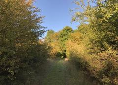 Ciel Vienne-en-Arthies 95510 Des chemins ensoleillés pour entrer dans l'automne