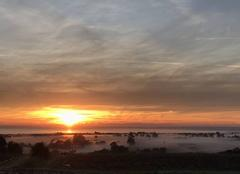 Ciel Saint-Meloir-des-Ondes 35350 Brume sur le marais et lever soleil...