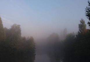 Brouillard Sarrewerden 67260 Un peu de brouillard