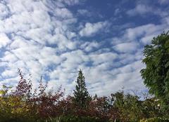 Ciel Mours-Saint-Eusebe 26540 Ciel mousseux en matinée