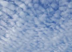 Ciel Sommesous 51320 Comme des moutons dans le ciel...