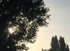 Ciel Bondigoux 31340 Lever de soleil