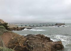Mer Les Sables-d'Olonne 85100 La côte sauvage