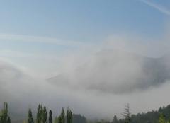 Brouillard Mevouillon 26560 Matin de brume