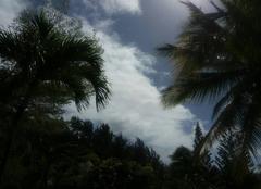 Ciel Grand Baie Bain de boeuf