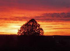 Ciel Tarcenay 25620 Beau coucher de soleil