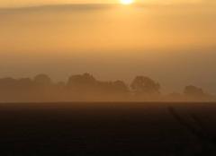 Brouillard Bonnemaison 14260 Matin brumeux