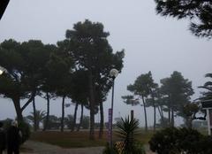 Brouillard Argeles-sur-Mer 66700 Argeles plage