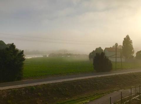 Dimanche matin brumeux à Bompas (66)