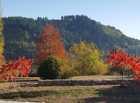 La feuille d'automne ...
