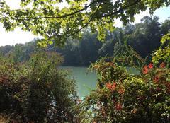 Faune/Flore Romans-sur-Isere 26100 L'automne en bord d'Isère