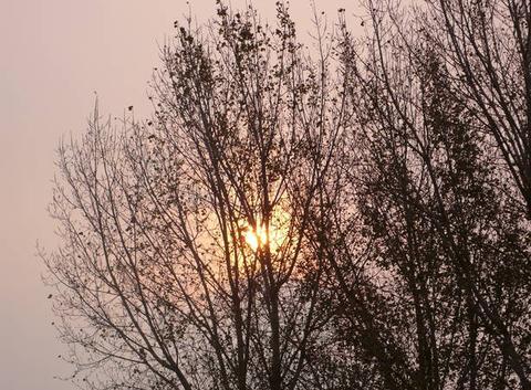 Luminosité étrange à midi