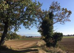 Ciel Mours-Saint-Eusebe 26540 Couleurs d'automne sous le vent du Sud