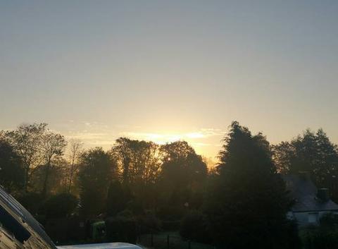 Belle matin
