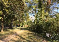 Vent Romans-sur-Isere 26100 L'automne sur les bords d'Isère