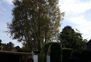 Ciel Sainghin-en-Melantois 59262 Très beau temps