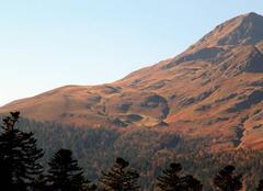 Faune/Flore Campan 65710 Montagne auprès du Pic du Midi ce vendredi 20 Octobre 2017.