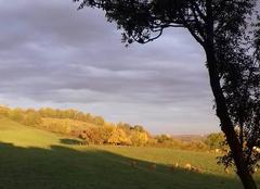 Faune/Flore Caylus 82160 L  automne   nous  donne  ses   couleurs