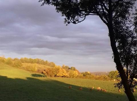 L  automne   nous  donne  ses   couleurs