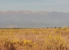 Chaleur Ghisonaccia 20240 Plaine et montagne