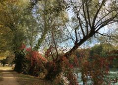 Vent Romans-sur-Isere 26100 Couleurs et fraîcheur en bord d'Isère