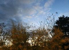 Ciel Mours-Saint-Eusebe 26540 Soleil couchant,  un soir d'automne