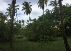 Nuages Punta Cana Chaleur humide aujourd?hui