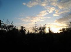 Ciel Chattancourt 55100 Lever de soleil