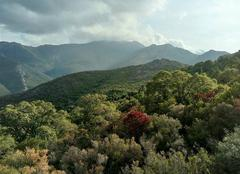 Nuages Luri 20228 Brume sur les hauts de Luri