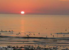 Mer Notre-Dame-de-Monts 85690 Coucher de soleil