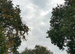 Nuages Soulac-sur-Mer 33780 Ciel à 10h05