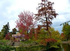 Ciel Bordeaux 33000 Couleurs automnales au Jardin public