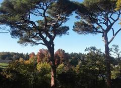 Ciel La Chapelle-sur-Erdre 44240 Couleurs d