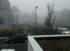 Brouillard Strasbourg 67000 Strasbourg
