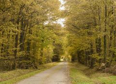 Climat Saint-Victurnien 87420 Paysage d'automne Saint Victurnien