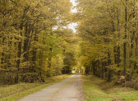 Paysage d'automne Saint Victurnien