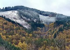 Faune/Flore Mariac 07160 L'automne et l'hiver