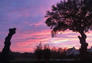 Ciel Thorigne-Fouillard 35235 Ciel rose le retour