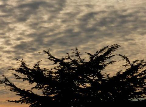 Ciel assez nuageux