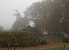 Brouillard Sainte-Gemme 79330 Brouillard