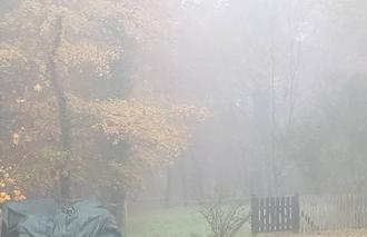 Brouillard Sainte-Gemme 79330 Brouillard  ce matin