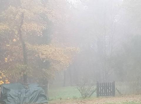 Brouillard  ce matin