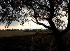 Ciel Mours-Saint-Eusebe 26540 Ciel d'automne