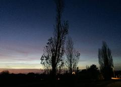 Ciel Mours-Saint-Eusebe 26540 Arbres dans le crépuscule