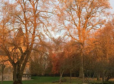Petit matin d?automne