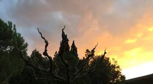 Ciel Mours-Saint-Eusebe 26540 Ciel de feu au lever du jour