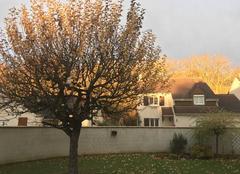 Ciel Marolles-en-Hurepoix 91630 Lever de soleil en automne